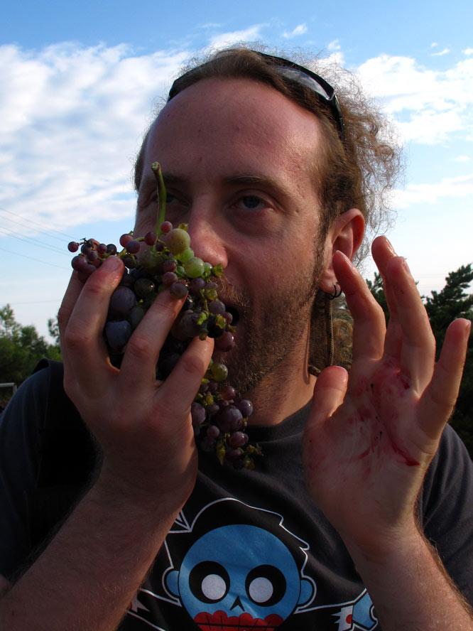üzüm yerken zevkten 4 köşe