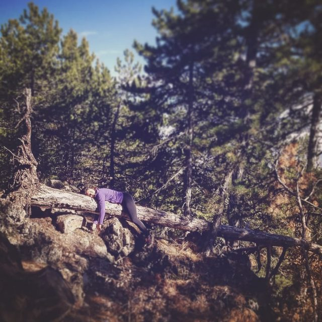 tembelhayvanning vol soguksumilliparki Bugun aileyle ormanda dolandik Milli parkin girisindekihellip